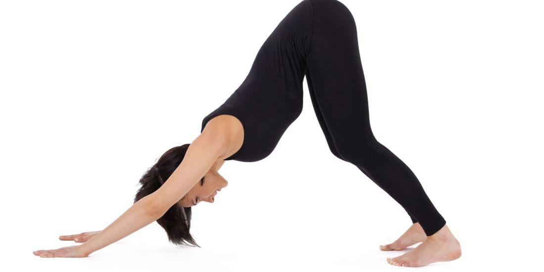 AL-Yoga-hinabschauender-Hund-Variante-shutterstock-fuer-burmester-0113-shutterstock_76705414 (jpg)