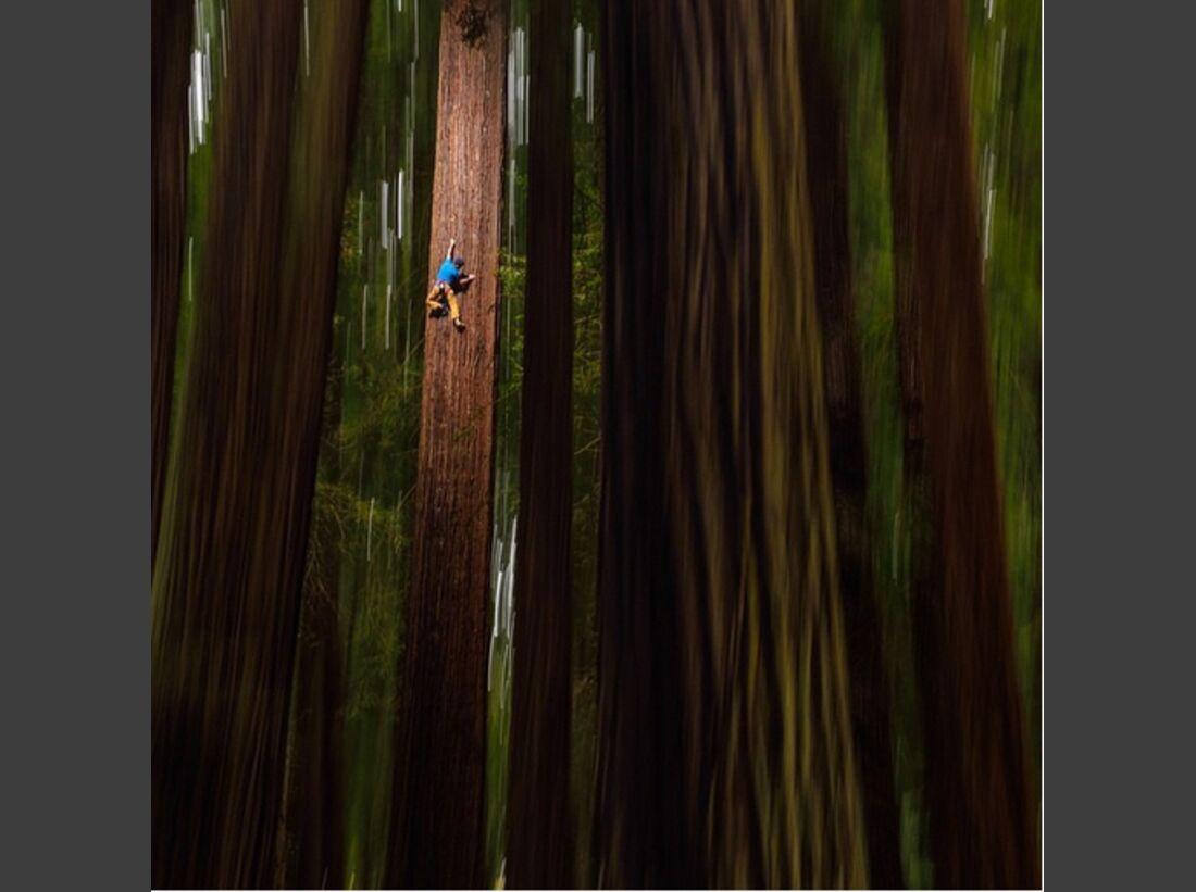 KL Chris Sharma Instagram Redwood forests